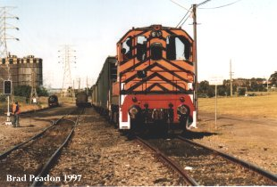 D6, 5910 and Bronzewing (out of sight) near Unanderra with a tour train, August 1997